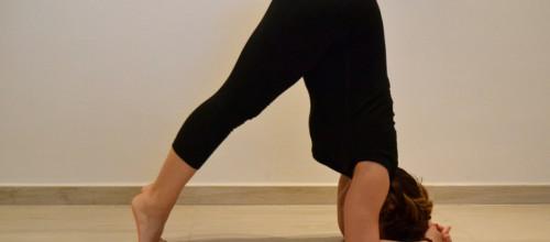 Hatha Yoga<br><img src=http://palestrapiramide.it/wp-content/uploads/2015/12/verde_blu-1.png />